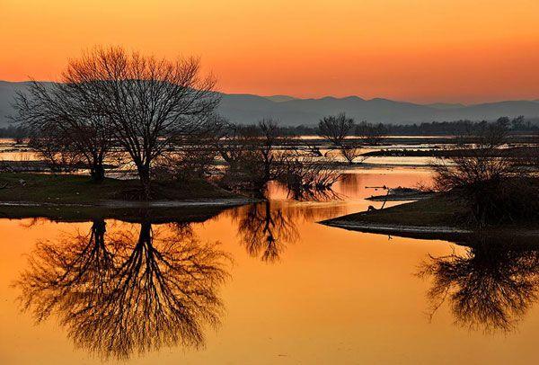 Kerkini lake. Serres, Greece.