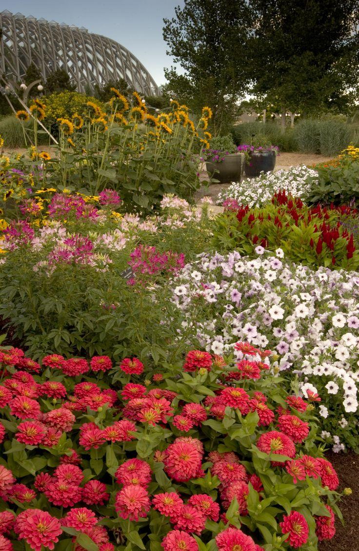 The Denver Botanic Gardens are so picturesque!