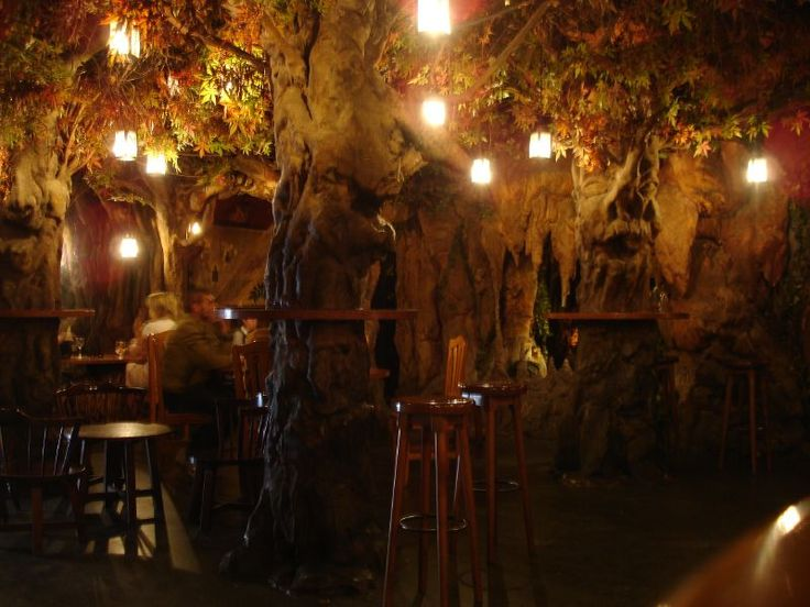 a bar in the forest