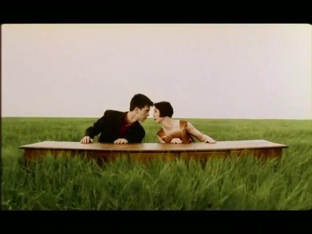 """Un accordéoniste joue. Dans l'herbe, un jeune couple, assis devant une table, mime avec tendresse et drôlerie les paroles de la chanson """"Cétait bien"""" chantée par Bourvil. Leurs gestes, qui ressemblent au langage des signes, racontent l'amour et son émotion. Ce film a obtenu de nombreux prix dans des festivals de cinéma du monde entier et a été diffusé par plusieurs télévisions."""