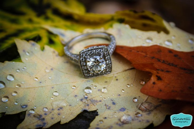 fall engagement pictures #fall #engagment #photography