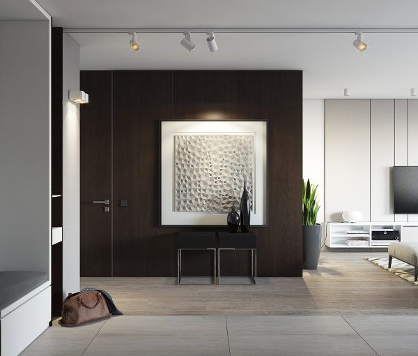Spacious looking one bedroom apartment with dark wood accents