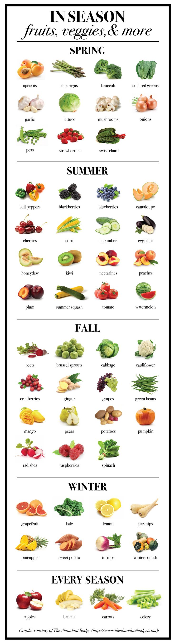 The in-season produce guide that you've always wanted, courtesy of The Abundant Budget! #groceryshopping #mealplanning #healthyliving #inseason #inseasonproduce #produce #eatclean