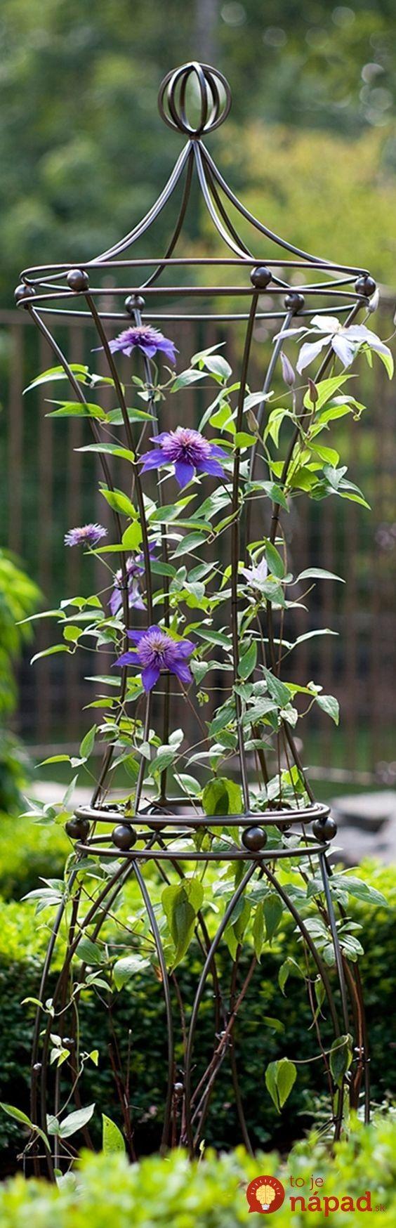Krásne nápady, vďaka ktorým popínavé rastliny vyniknú ešte viac! :-)