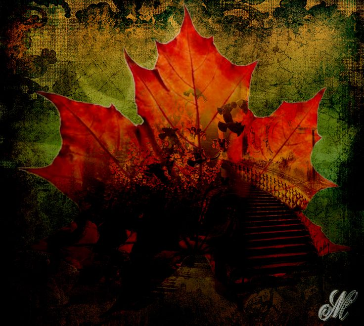 Autumn Leaves Digital art
