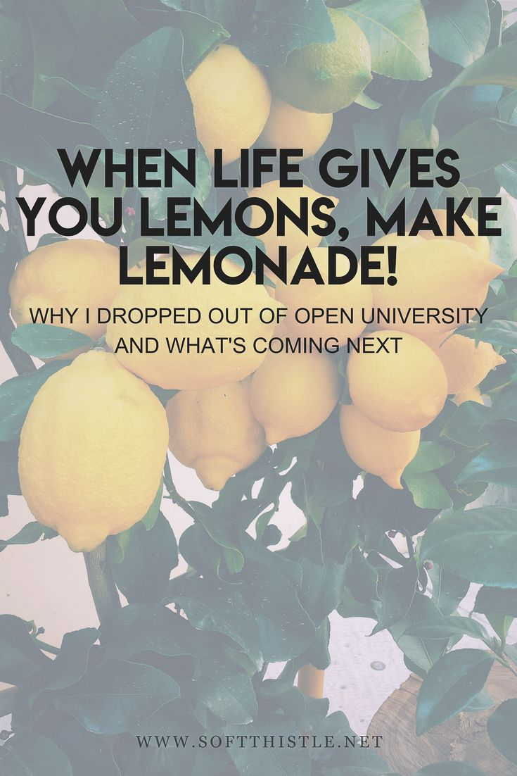 When Life Gives You Lemons...  Why I dropped out of uni and what's next!