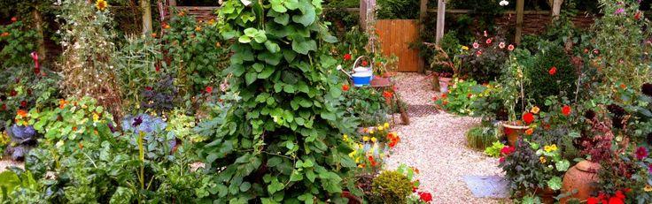 How to Grow Your Own Vegetables - My garden school courses.