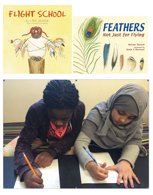 To address NGSS PE K-LS1-1, students can use the information in these books to design a Survival School with four classes that will teach all 16 birds in Feathers the skills they need to survive.