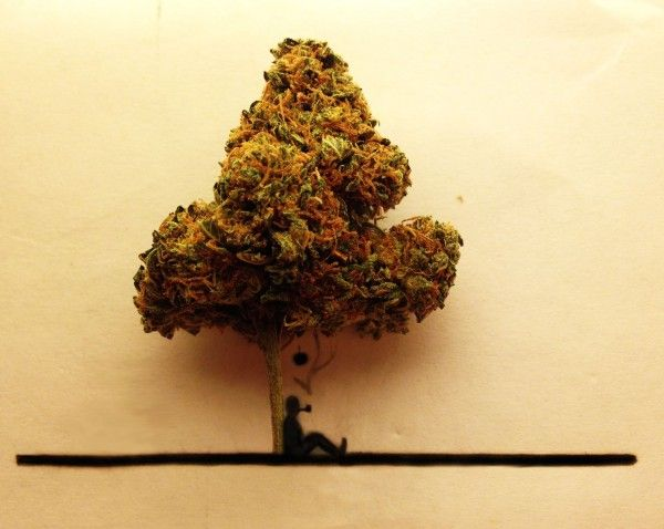 Bilder um Marihuana malen