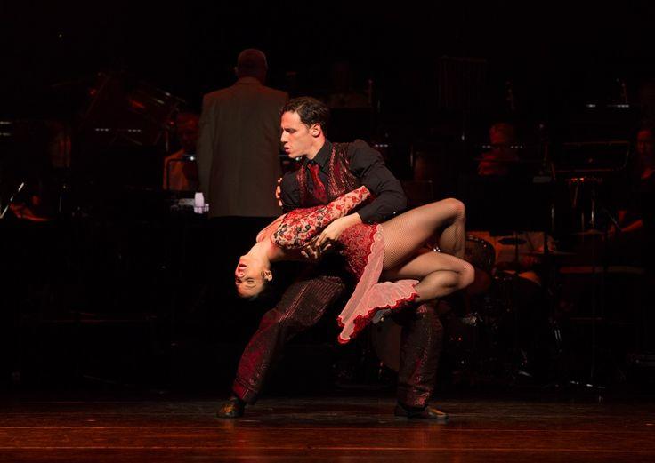 Close  Edit description Ain't It Necessarily So in Queensland Ballet's Strictly Gershwin  Photo David Kelly
