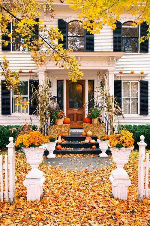 Autumn Days...this picture makes me want to drink hot cider and snuggle under an afghan.