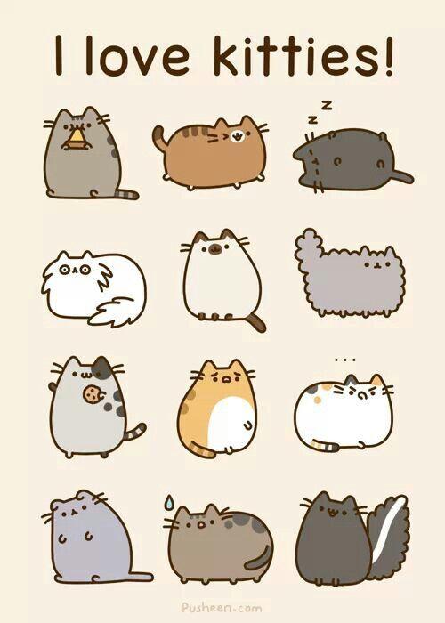 Pusheen cats