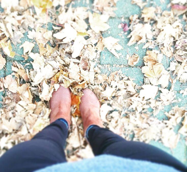 Werd fit für den Herbst mit Ayurveda und Co. Ok, gestern war der offizielle Herbstanfang und die Sonne schien mir ins Gesicht, die Luft war mildund nur vereinzelt turnten bunte Blätter über den Boden. Klassischer Frühherbst und in der ayurvedischen Lehre genau wie der Hochsommerweiterhin Pitta-Zeit. Bald allerdings wird der Wind kälter, die Tage kürzer und die Zeit schlägt um …