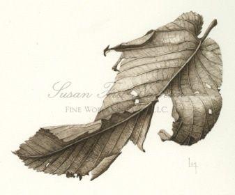 Dried Leaf, 201 by Lara Call Gastinger
