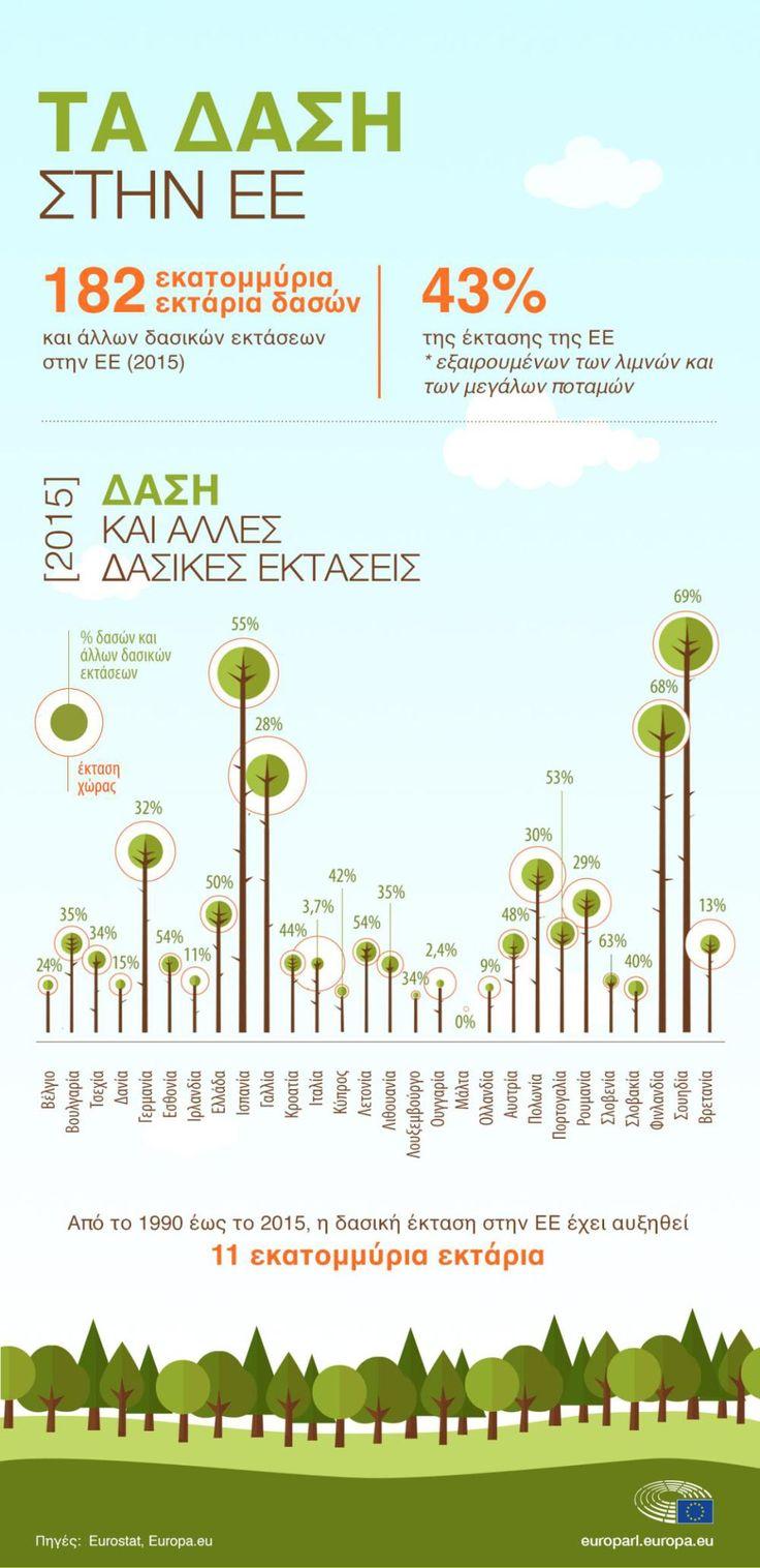 Τα δάση είναι απαραίτητα για την καταπολέμηση της κλιματικής αλλαγής, γι' αυτό το Ευρωπαϊκό Κοινοβούλιο (ΕΚ) θέλει να διασφαλίσει ότι τα κράτη μέλη θα τα διατηρήσουν υγιή.…