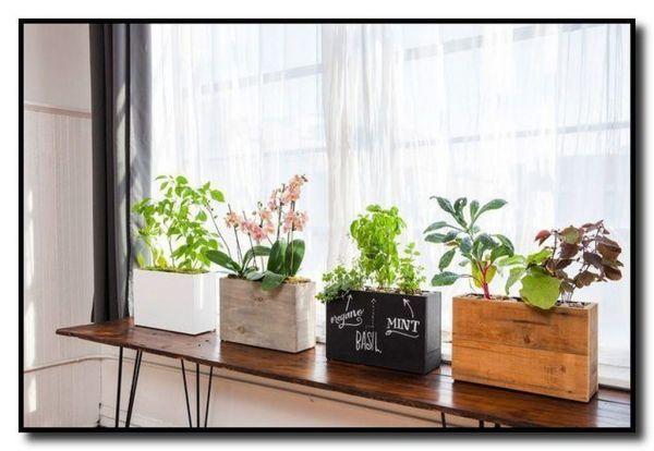 Inspiring Floating Window Plants Design Ideas 27 Hydroponic Gardening System Hydroponic Gardening Plants