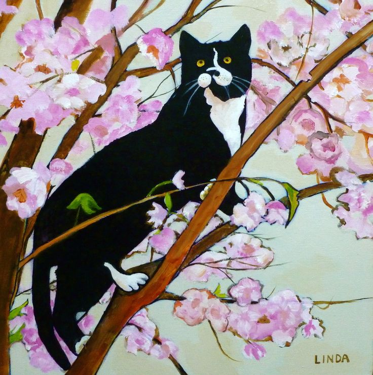 """Acrylic, 16"""" x 16"""" Black Floater Front Loaded Frame  This is a painting of my cat Jack in the Cherry Tree last spring near my patio.  He is a little ham and just a bit clumsy so I was keeping my fingers crossed that he wasn't going to fall off the tree."""
