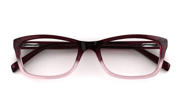 French Connection  Glasses Frames Online
