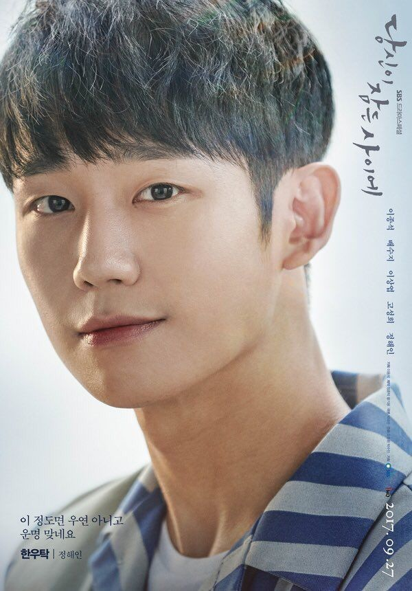 Jung Hae-In (Han Woo-Tak , While You Were Sleeping)