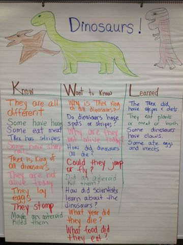 love this chart at the beginning of our unit-- will help to uncover what SHE wants to get out of it