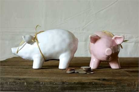 """7-1/4""""L x 4""""H Ceramic Piggy Bank, 2 Colors Pink and White."""