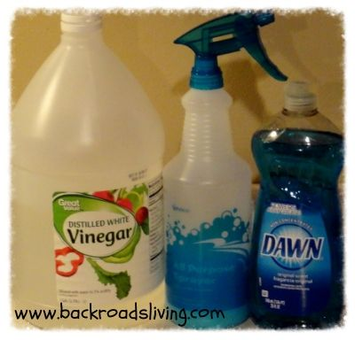 Dawn and Vinegar Cleaner from back Roads Living is a wonderful cleaner!