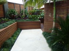 modern nz native garden - Google Search
