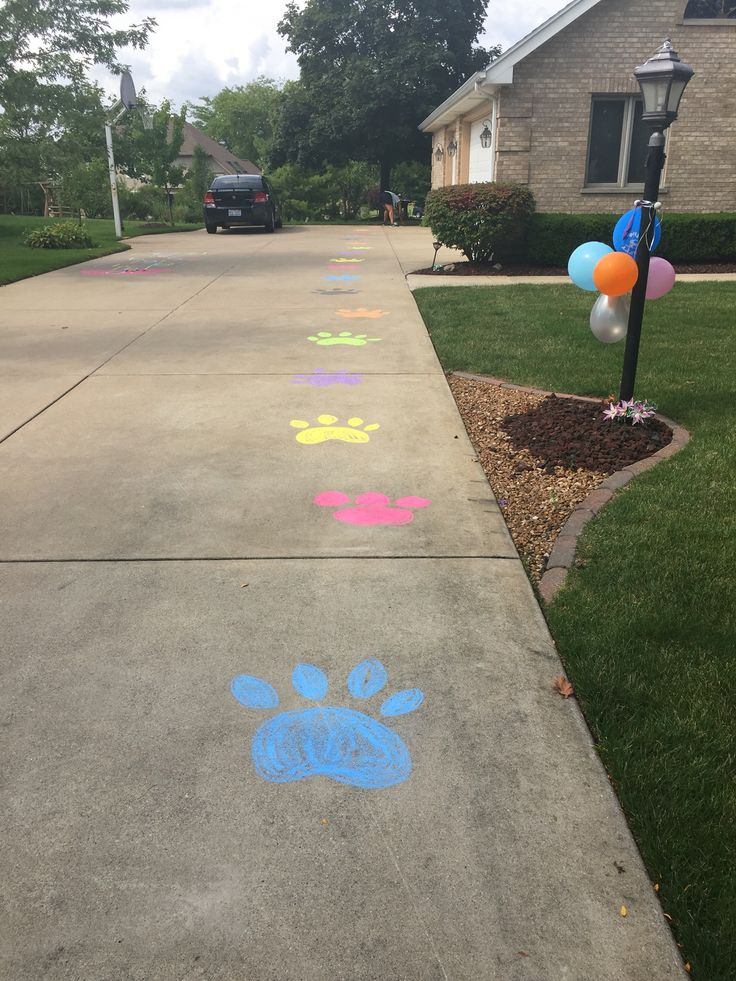 Paw prints for beanie boo adoption party