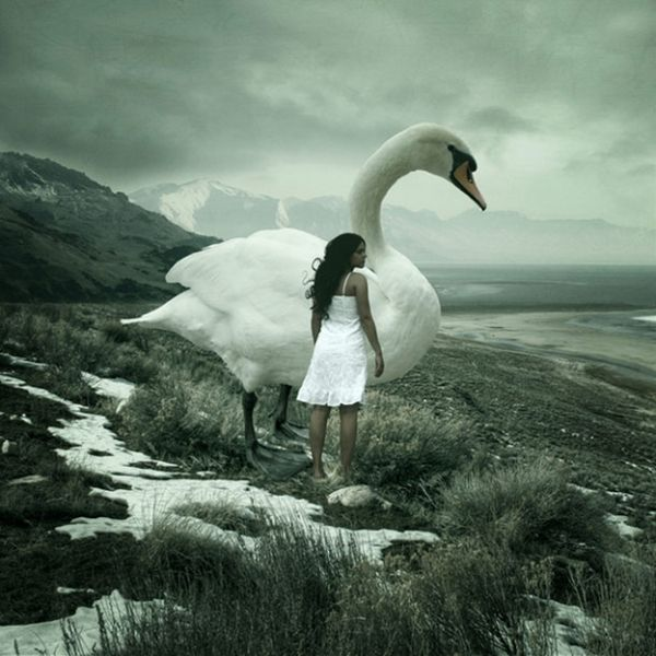 Anja Stiegler photography