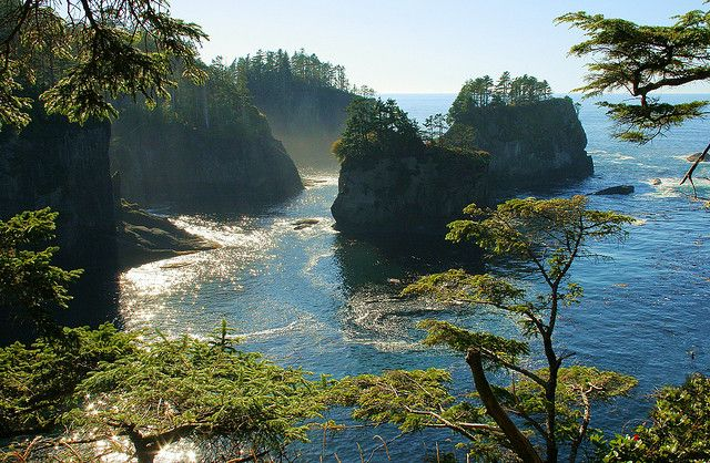 Cape Flattery, Forks area, Washington State by Don Briggs, via Flickr