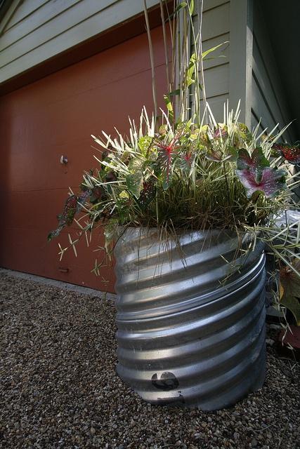 container garden in a culvert pipe