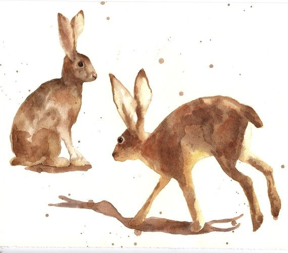 HARE WATERCOLOUR Print animal prints UK artist by eastwitching, $18.00