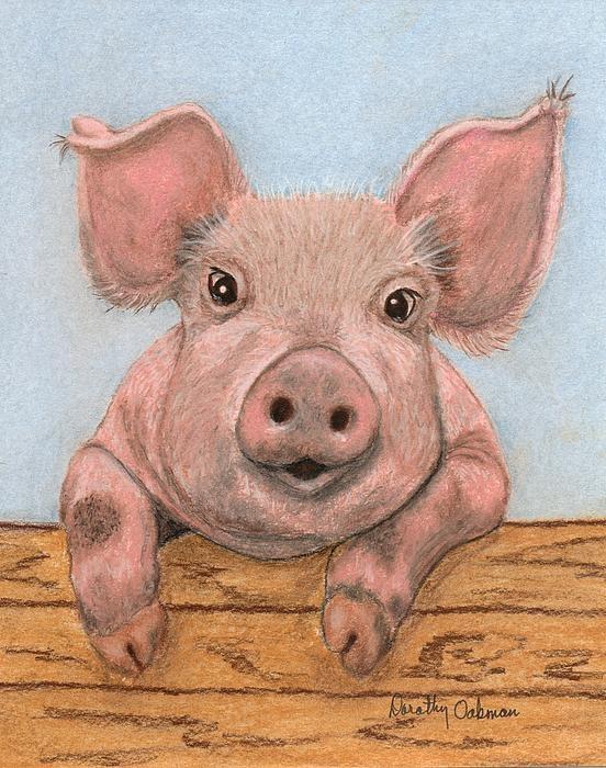 Смешные рисунки про свинок, своими руками