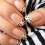 Nail Art - French Manicure Zebra Nails