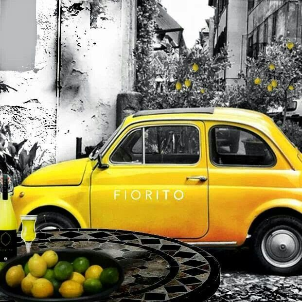 199 Best Images About Fiat 500/Abarth On Pinterest