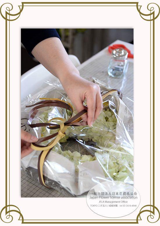 【Hydrangea Wreathe/紫陽花リース】JFLA Fresh Flower Diploma Class.フレッシュフラワー認定資格のレッスン風景。リボンワークテクニックも学びます。