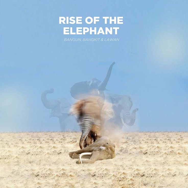 Rise of The Elephant