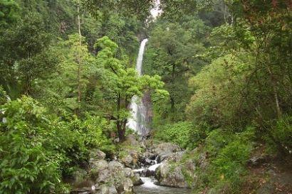 Trips Bali