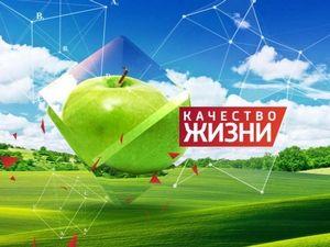 www.diplomkursovaya.ru shop kachestvo-zhizni analiz-pokazatelej-kachestva-zhizni-naseleniya-rf-na-primere-rybinska