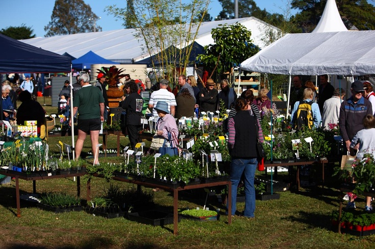 Just one of the many green stock nurseries at the 2011 QLD Garden Expo