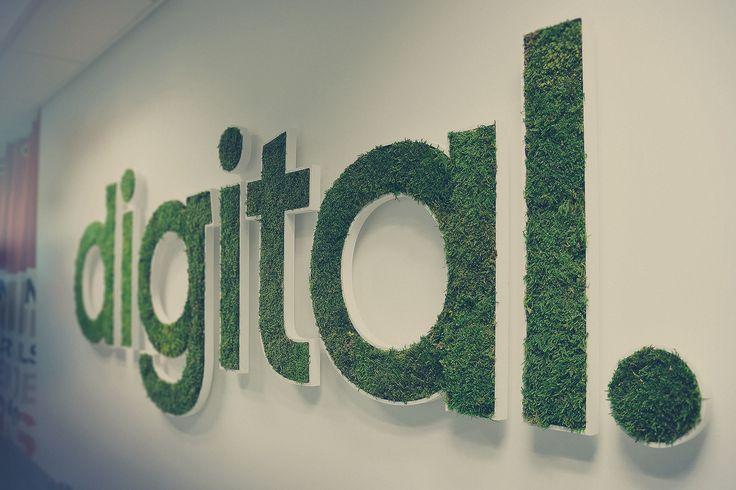 L'ADN de l'agence digitale SENZO : le digital au travers ici du logo végétal qui trône fièrement près du pôle des développeurs