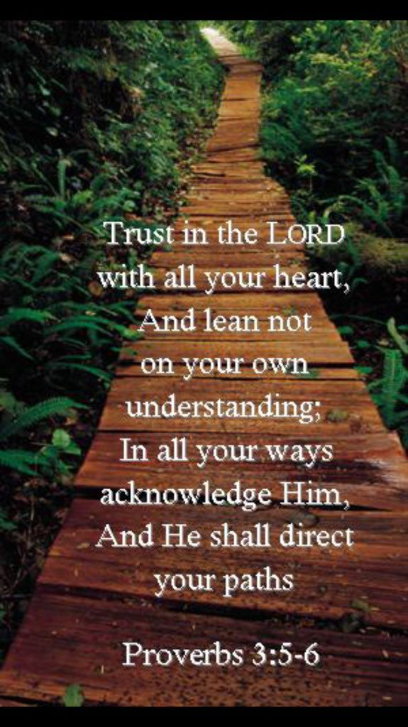 Trust in the LORD with all your heart, And lean not on your own understanding; In all your ways acknowledge Him, And He shall direct your paths. [Proverbs 3:5-6]