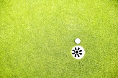 How to Create Your Own Backyard Putting Green
