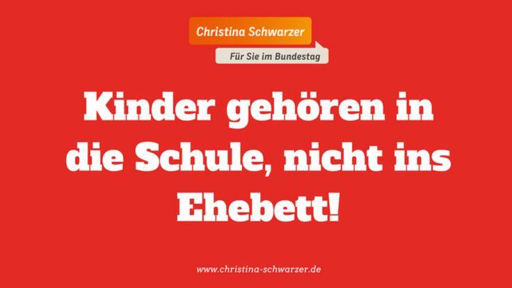 Dieses Poster veröffentlichte Bundestagsabgeordnete Christina Schwarzer auf ihrer Homepage, um Gegen Maas' Gesetzentwurf zu protestieren