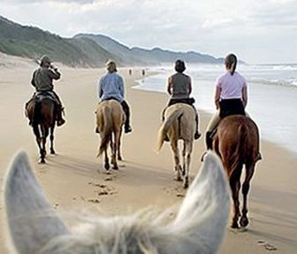 Rates for horse safaris in St Lucia, iSimangaliso Wetland Park, Zululand, South Africa. Beach and Game rides.