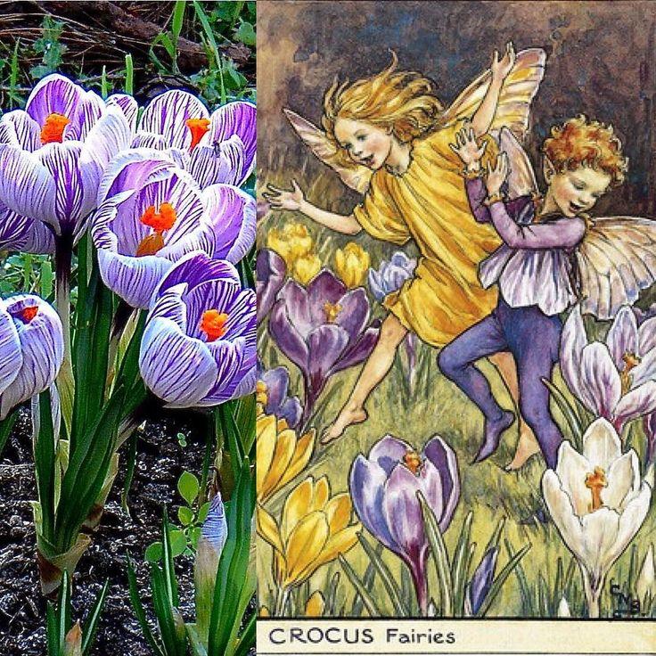 Çiğdemler baharı müjdeliyor...! . . . Karlar eriyip de kırlarda ilkbaharın müjdecisi çiğdem çiçeklerinin açmaya baslamasıyla Hititler AN.TAH.SUM.sar bayramını kutlarlarmış tam otuz sekiz gün otuz sekiz gece! Bayramın sekizinci ve dokuzuncu günleri Arinnanın Güneş Tanrıçasına sunulurmuş toplanan çiğdem çiçekleri  Hattiler'de Vurusemu Hurriler'de Hepat Hititlerde Arinnanın Güneş Tanrıçası Geç Hititlerde Kupaba Yunan ve Roma Döneminde Kybele adlarını taşıyan Ana Tanrıçanın suretinde doğanın kış…