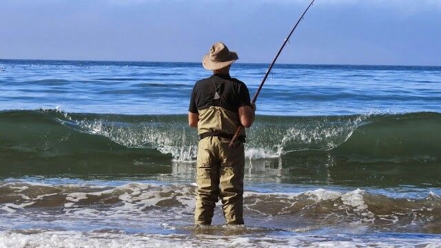 30 best images about picture ideas on pinterest first for Morro bay fishing