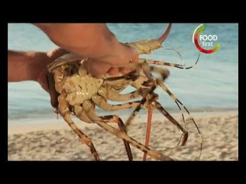 Kill your Meat before you Eat - Crayfish - Miguel Maestre