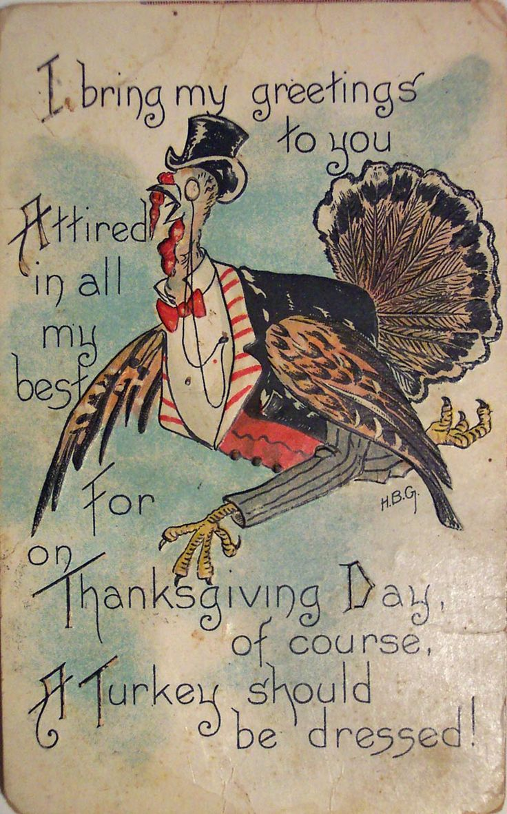 I bring my greetings to you attired in all my best, for on Thanksgiving Day, of course, a turkey should be dressed!