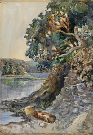 Canadian landscape essay